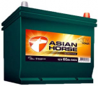 Extra Start Asian Horse 36